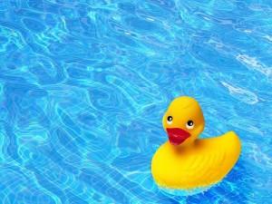 Invitados en la piscina comunitaria